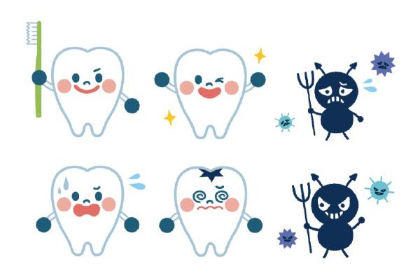 歯の寿命が短くなる